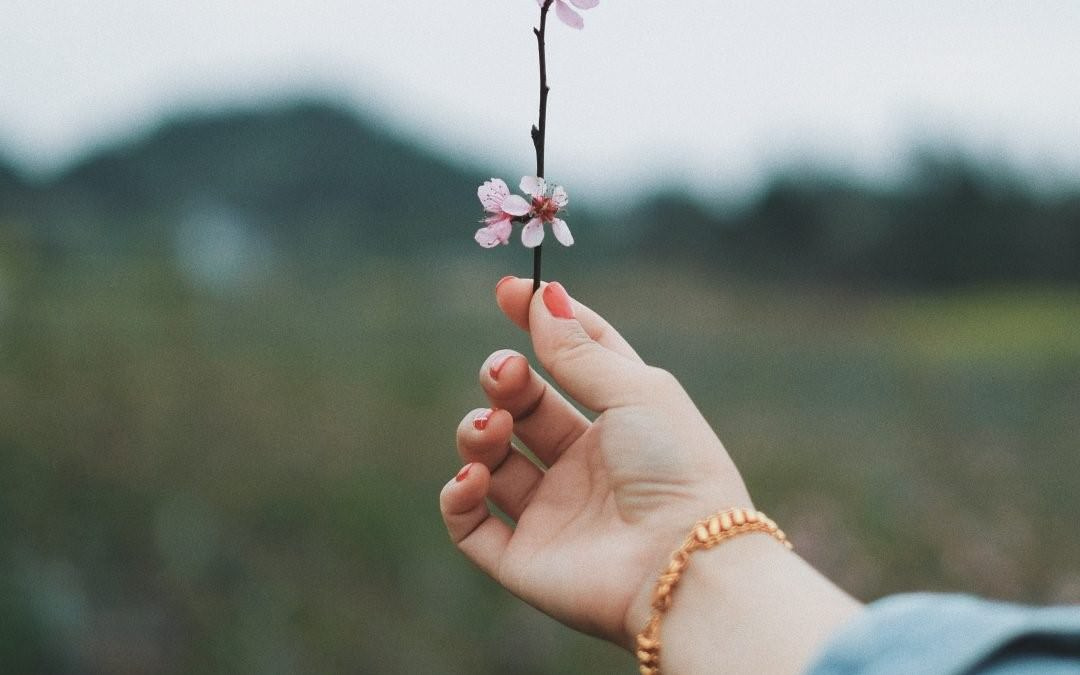 Dłonie – jak uchronić je przed przesuszeniem?