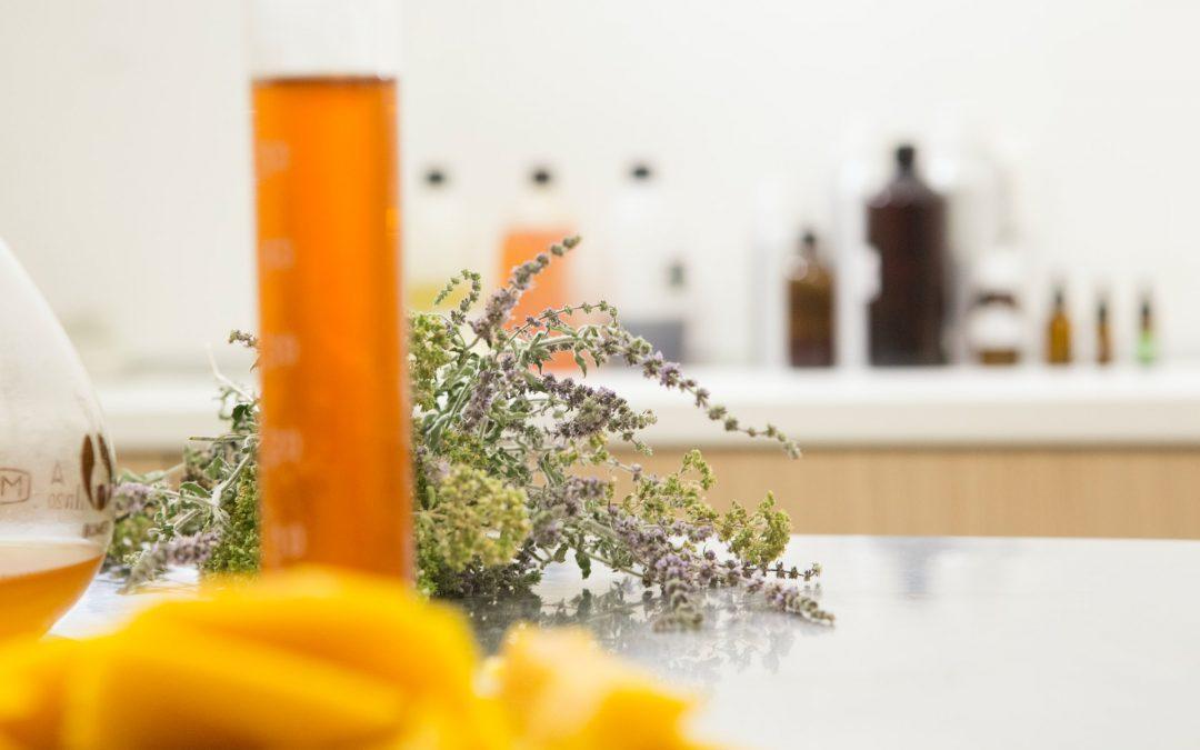 Kosmeceutyki w La Guèl - przegląd oferty